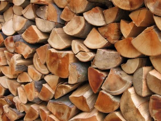 vendita legna faggio, carpino e rovere